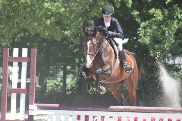 Hunter Jumping