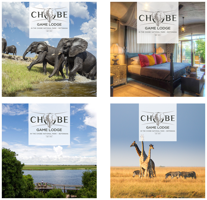 Chobe Game Lodge Launches New Brand