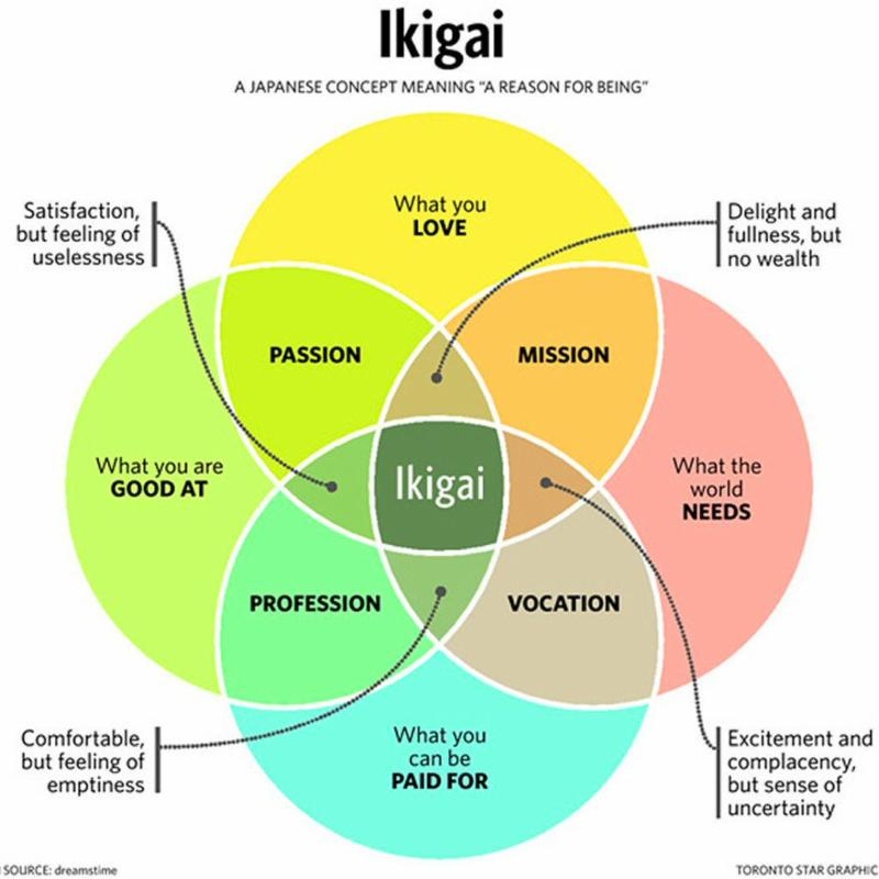 Ikigai illustrated