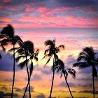 Maui Sunset by Kell Lingren