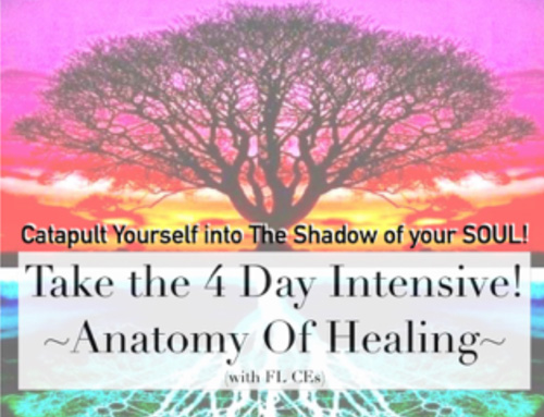Anatomy of Healing