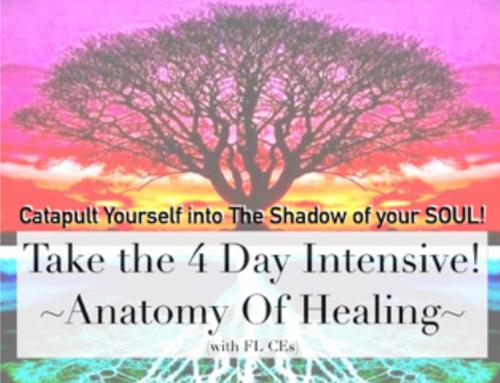 Anatomy of Healing
