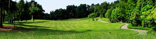 golfb.jpg