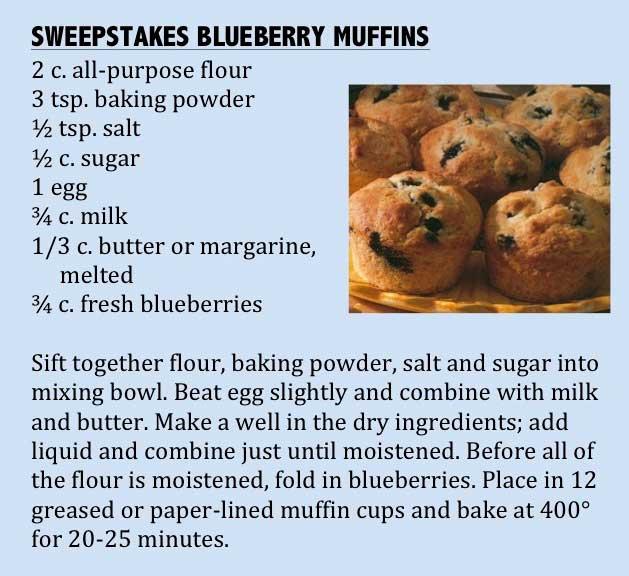 Impress with Blue Ribbon Recipes _ Tips