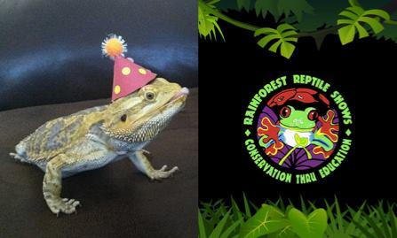 Rainforest Reptile Show