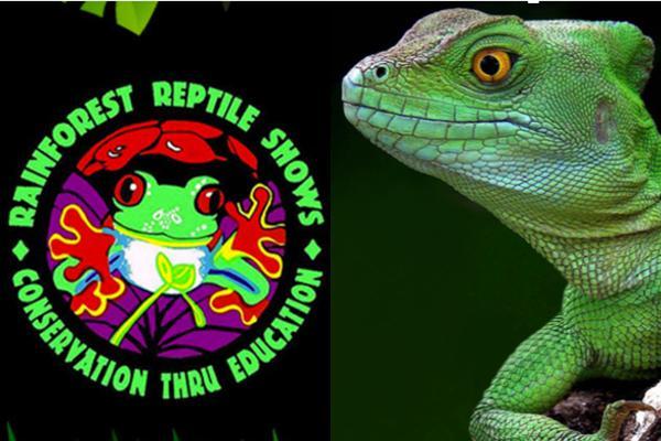 Lizard Show