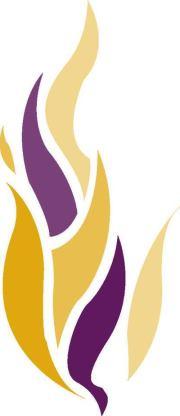 TIS Flame