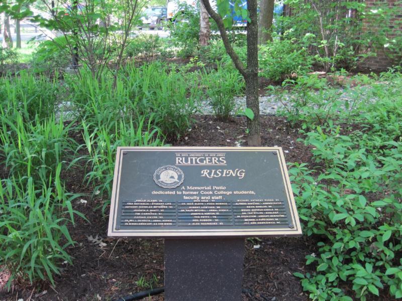 Rutgers Rising plaque
