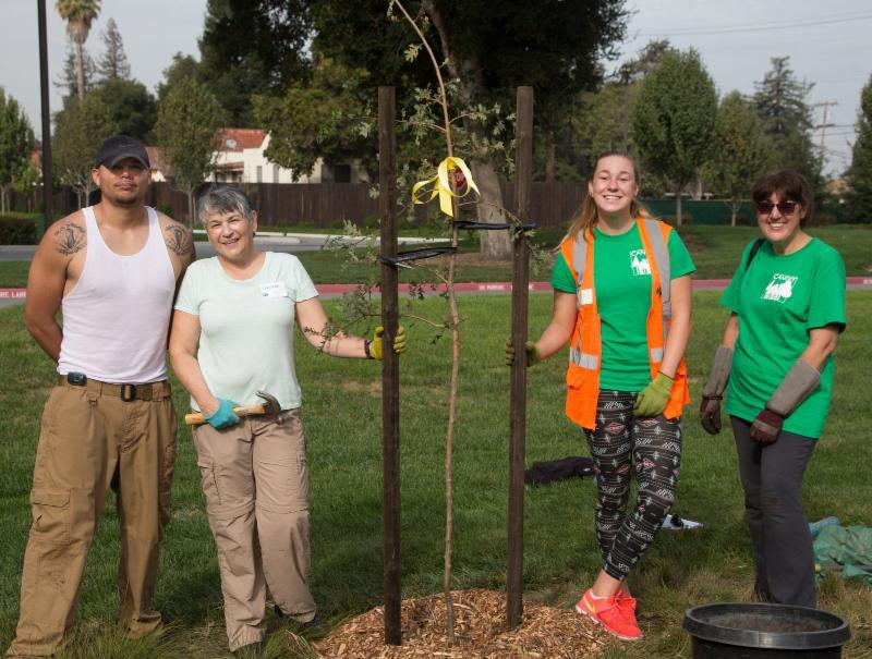 Volunteers pose with their tree