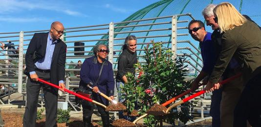 East Palo Alto ceremonial planting