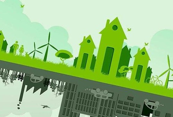 Go green with the sustainability academy