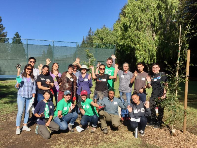 Canopy Planting Leaders