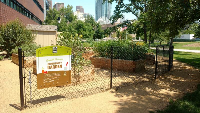 In The Fall Of 2015 We Were Able To Construct The Connect Auraria Community  Garden. With Help From Denver Urban Gardens (DUG) And A Fantastic Group Of  ...
