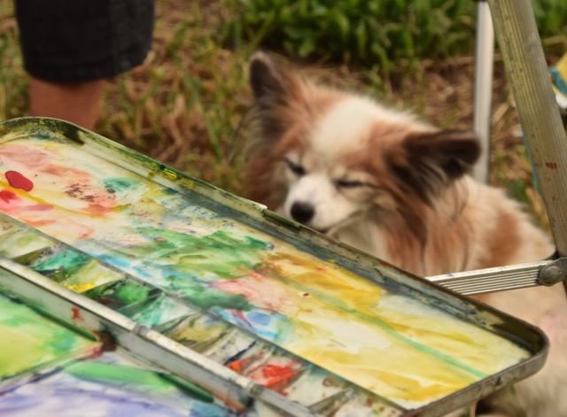 En Plein Air palette and dog