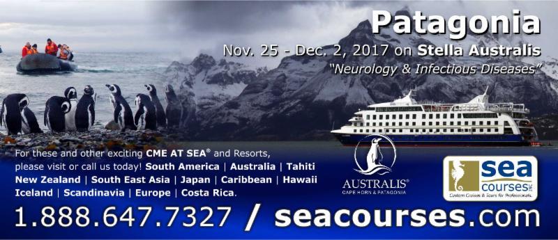 Patagonia - Australis