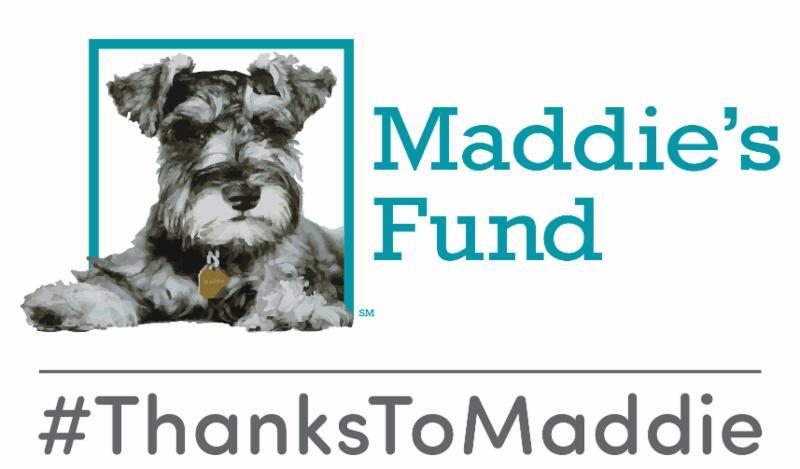 Maddie logo