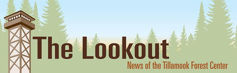 The Lookout Newsletter Banner