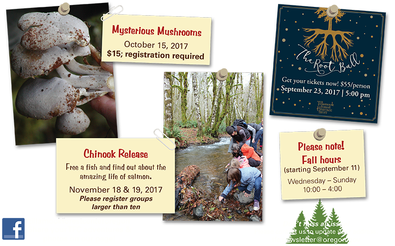 Save the date for great fall events