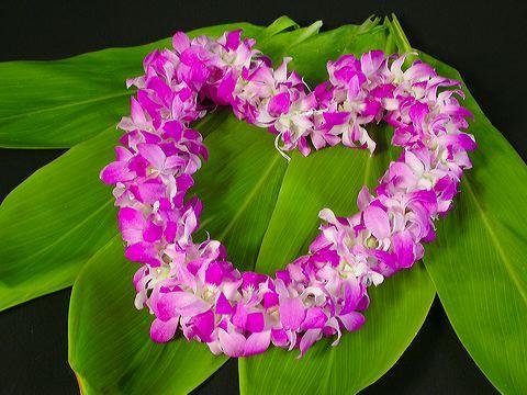 hawaiian heart lei