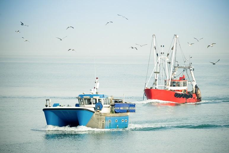 two fishing boats in water