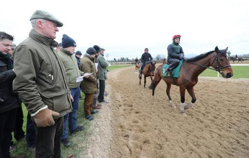Willie Mullins watches Footpad