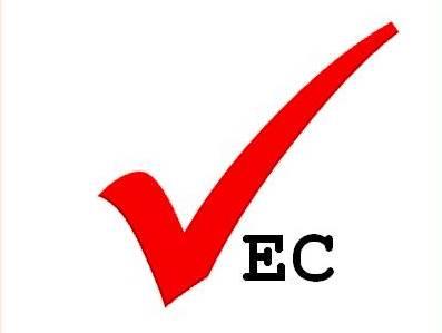 $ New VEC logo