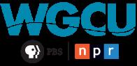WGCU-FM radio interview on show GulfCoast Live! from Ft. Myers, FL