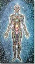 ALex Gray Energy Body