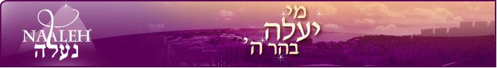 www.Naaleh.com