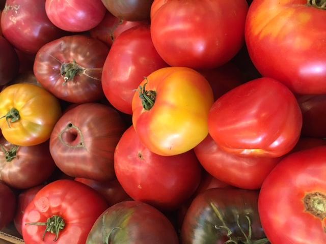 Hudson tomatoes
