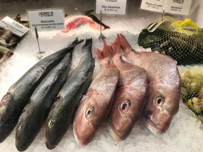 Eikos fish