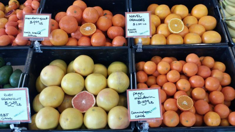 Hudson citrus