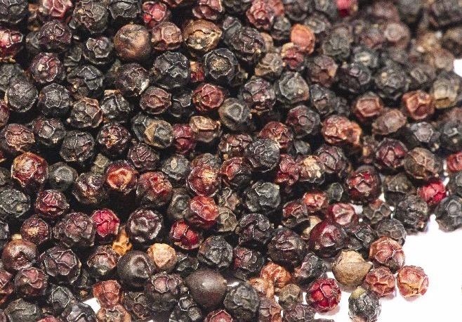 Burgundy peppercorns
