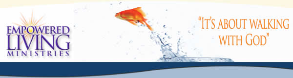 Goldfish header