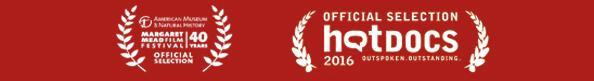 film festival laurels