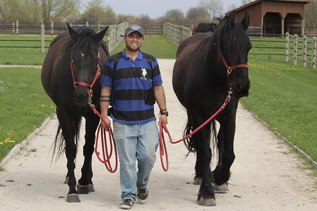Edgar and 2 horses
