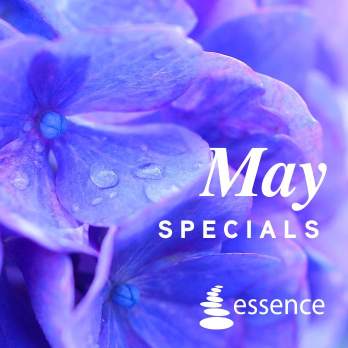 May Specials Hydrangea Image