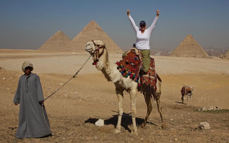 Malaka Camel