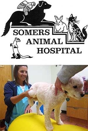 Somers Animal Hospital logo and photo