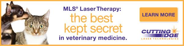 Cutting Edge Laser Technologies ad