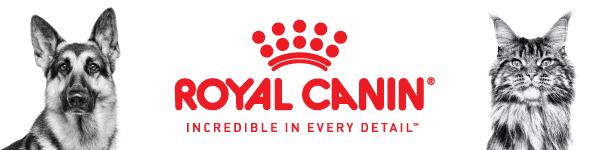 Royal Canin banner ad