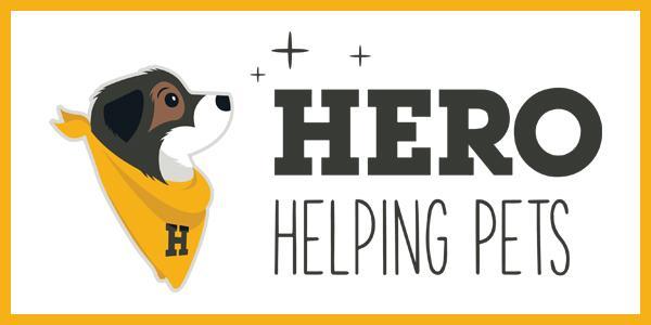 Hero Braces banner ad