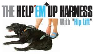 Blue Dog Designs_ Help _Em Up logo