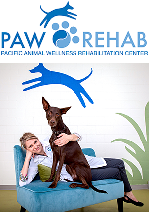 Paw Rehab logo and Dr. Joanne Bak