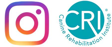 Instagram and CRI logos