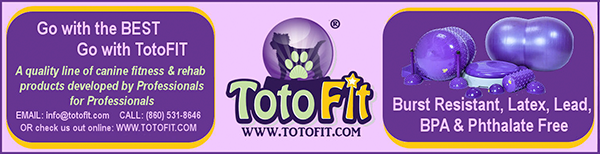 TotoFit banner ad