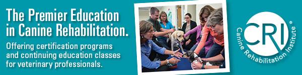 Canine Rehabilitation Institute ad