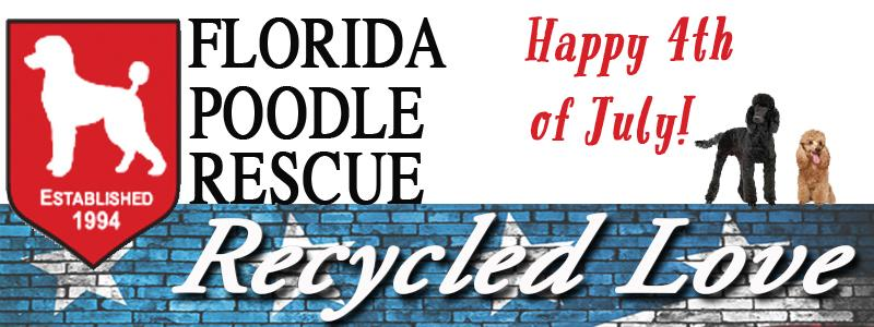 Florida Poodle Rescue News for July