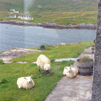 Scottish Island home swap