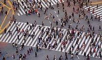 population_video